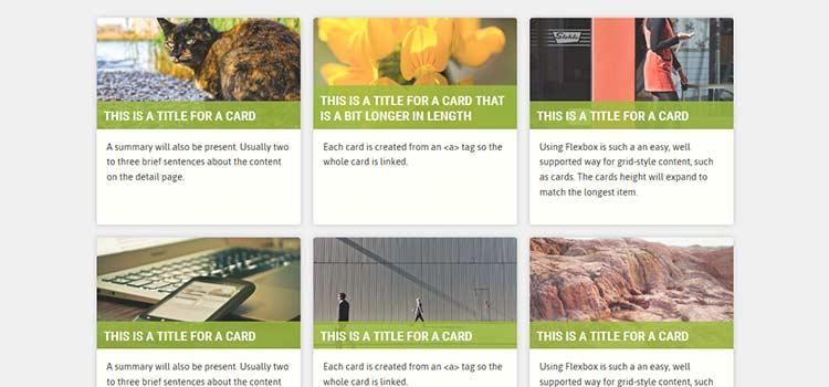 Flexbox Cards